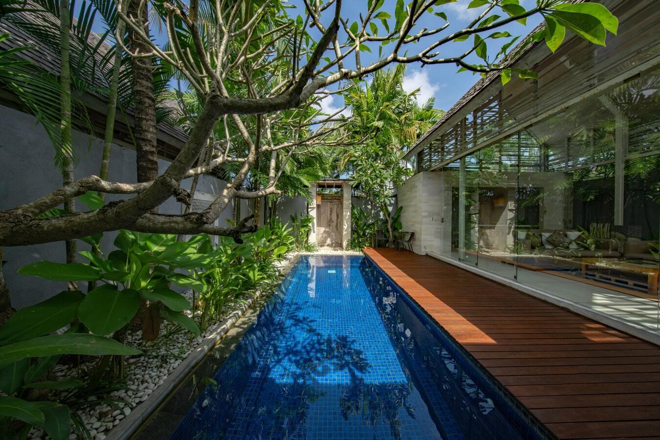 Taman tropis dengan penataan minimalis modern dan kolam renang, foto: unsplash.com